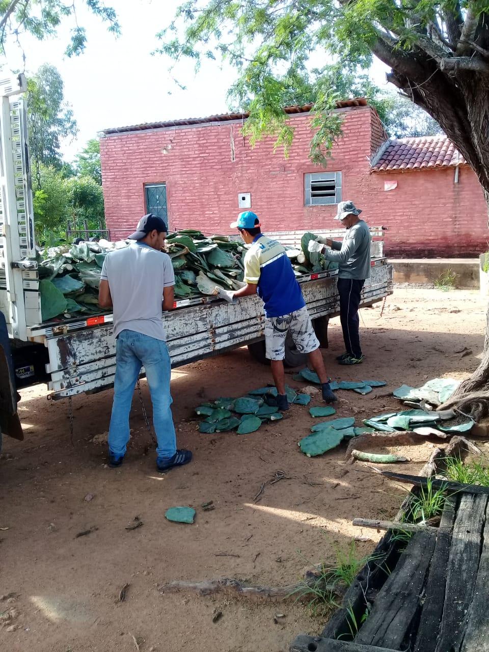 distribuicao-de-palmas-continuam-com-associacoes-de-comunidades-rurais-em-monteiro5.jpeg